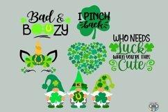 St Patrick's Day svg, Bundle svg, Clover svg, Cricut Files Product Image 2