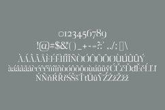 Deidra Serif Typeface Product Image 4