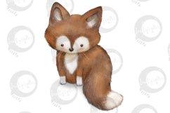 Baby Woodland   5 animal illustrations   PNG/JPEG clip art Product Image 4