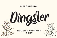 Dingster - Rough Handrawn Font Product Image 1