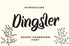 Web Font Dingster - Rough Handrawn Font Product Image 1