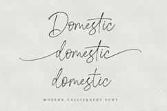 Domestic Script Product Image 2