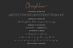 Cherishline Script Font Product Image 2