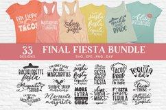Final Fiesta svg bundle dxf png eps - Bachelorette Party Product Image 1