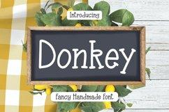 Donkey - Fancy Handmade Font Product Image 1