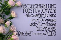 Donkey - Fancy Handmade Font Product Image 5