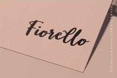 Web Font Dorothy - Beauty Script Font Product Image 2