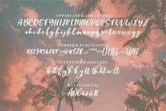 Web Font Dorothy - Beauty Script Font Product Image 3