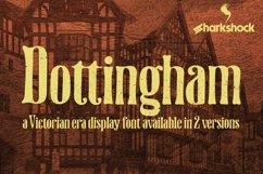 Dottingham Product Image 1