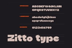 DTF Zitto Product Image 3