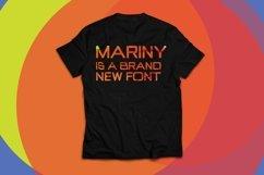 Web Font Faegan Typeface Product Image 3