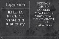 Digitany - Multipurpose Pixel-Serif Font Product Image 3