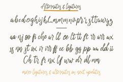 cherrio brush font Product Image 2