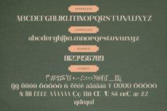 Charllote Sans Font Product Image 4