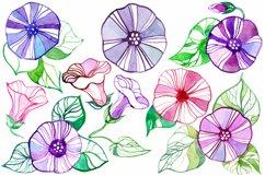 Bindweed | patterns & motifs Product Image 4