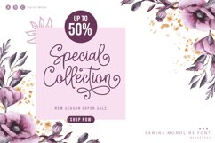 Samink Monoline font & Extras Product Image 3