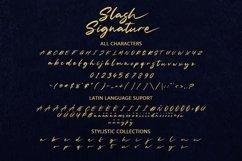 Slash Signature Product Image 2