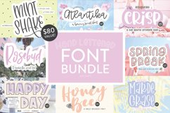 Hand Lettered Font Bundle by Dixie Type Co. Product Image 1