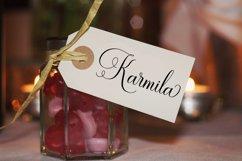 Ramolina Script Product Image 10