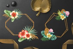 Golden Tropics Product Image 3