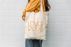 Fly Bird - Cute Display Font Product Image 5