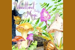 Watercolor Fall Clipart - Autumn Clipart - Mushrooms Product Image 3