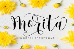 Morita Product Image 1
