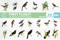 Birds Bundle Vintage Clipart Set Product Image 1