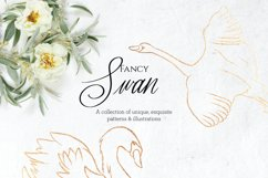Fancy Swan Collection Product Image 2