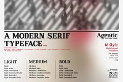 Agentic - Serif font family Product Image 4
