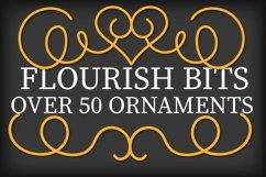 Flourish Bits - Over 50 Hand Lettered Flourishes! Product Image 2