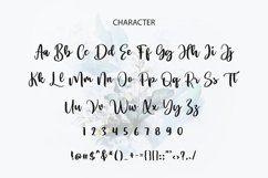 Virgosa Modern Script Font Product Image 2