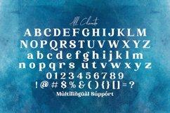 Phoenix Ayash - Bold Serif Font Product Image 14