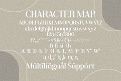 Andine - Beautiful Serif Font Product Image 2