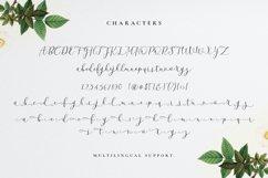Beatisia Script Product Image 6