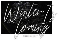 Harritton Modern Script Font Product Image 4