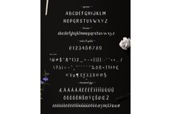Vroffloow family Typeface Product Image 5