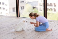 Cute teenage girl training her spitz dog at home Product Image 11