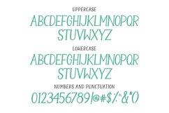 Camellia - a handwritten serif font Product Image 3