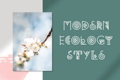 Bohemian - Decorative font duo Product Image 5
