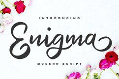 Enigma   Modern Script Font Product Image 1