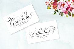 Bettrisia Script - Elegant Calligraphy Font Product Image 3