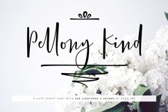 Pellony Kind Cute + Extras Product Image 1