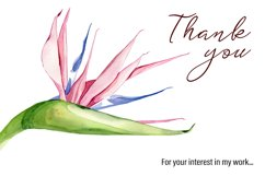 Watercolor tropical clipart, flower and leaves Product Image 2