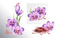 Saffron Product Image 2
