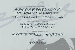 Web Font Balgie - A Stylish Script Font Product Image 6