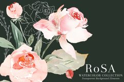 RoSA - Floral Clipart Set Product Image 2