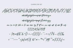 Alphasoil Signature Font Product Image 2
