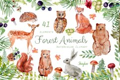 Forest Animals Clipart, Woodland Creatures, Fox, Bear, Owl Product Image 1
