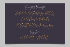 Norland Santana - A Luxury Font Duo Product Image 5
